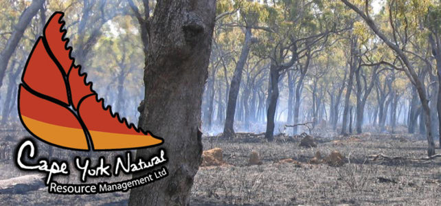 Fire management clusters on Cape York