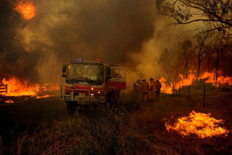 PHOTO: Analysts need to understand how certain fire types, such as grass or forest fires, behave. (AAP: Paul Miller)