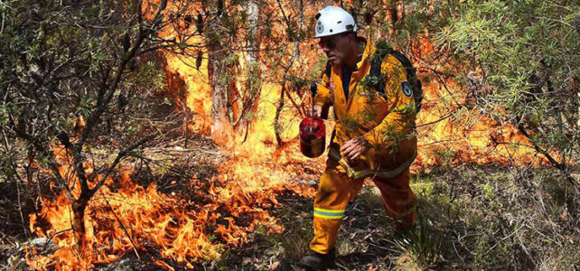 Fire Breaks in the Form of Parklands