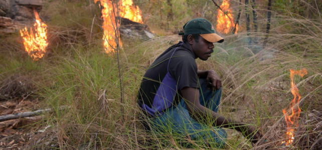 Fighting Carbon with Fire in Western Arnhem Land, NT