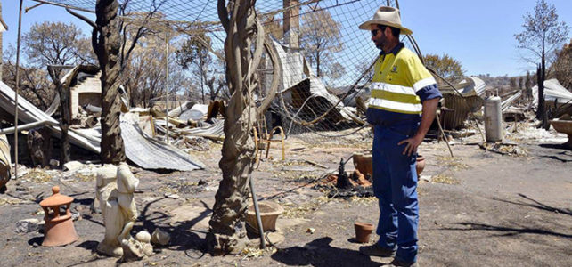 Troy Grant welcomes Sir Ivan bush fire inquiry