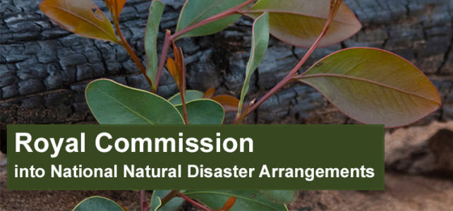 Royal Commission into National Natural Disaster Arrangements